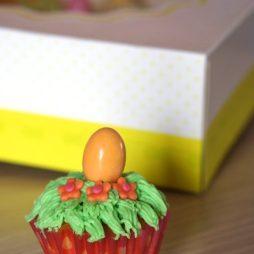 Cupcakes-per-pasqua-3